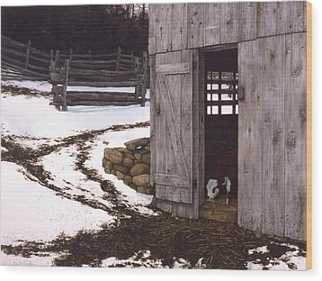 Wood Print featuring the painting Joshua's Place by Tom Wooldridge