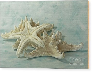 Journey To The Sea Starfish Wood Print by Inspired Nature Photography Fine Art Photography
