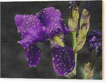 Floral Tears Wood Print by Renee Anderson