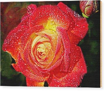 Joyful Rose Wood Print by Mariola Bitner