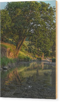 July Morning Along The Creek Wood Print by Bruce Morrison
