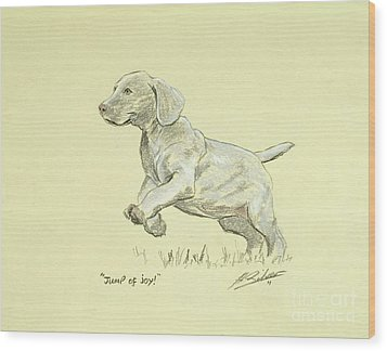 Jump Of Joy Wood Print by John Silver