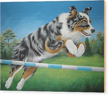 Jumping Aussie Wood Print by Tish Wynne