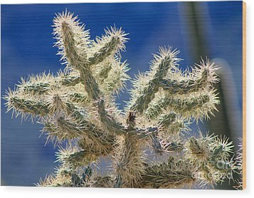 Jumping Cholla Wood Print