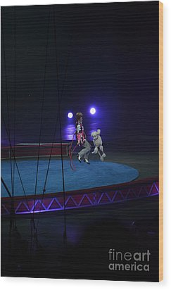 Wood Print featuring the photograph Jumprope With Fido by Robert Meanor