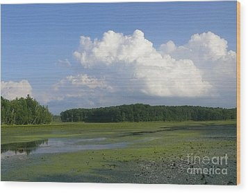 June Reservoir Wood Print by Betsy Cotton