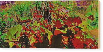 Jungle Abstract Wood Print by Mike Breau