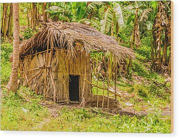 Jungle Hut In A Tropical Rainforest Wood Print by Colin Utz