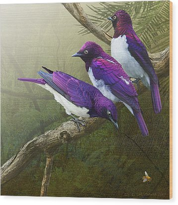 Jungle Mist -amethyst Starlings   Wood Print by R christopher Vest