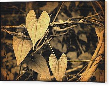 Wood Print featuring the digital art Jungle Vines by Milton Thompson