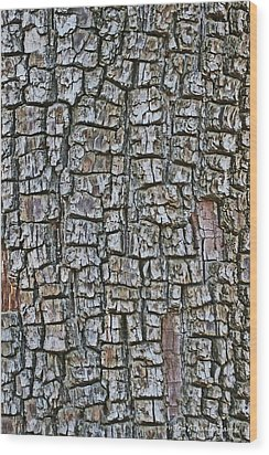 Juniper Bark- Texture Collection Wood Print by Tom Janca