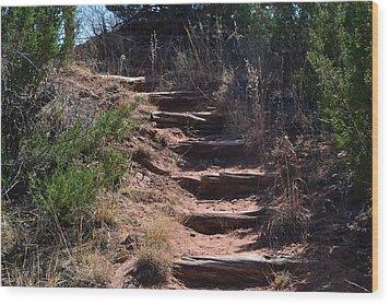 Juniper Ridge Steps Wood Print