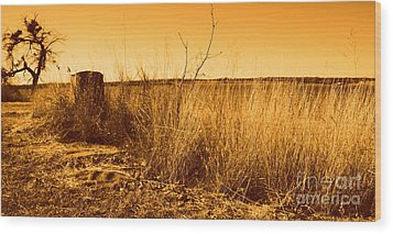 Just A View Wood Print by Mickey Harkins