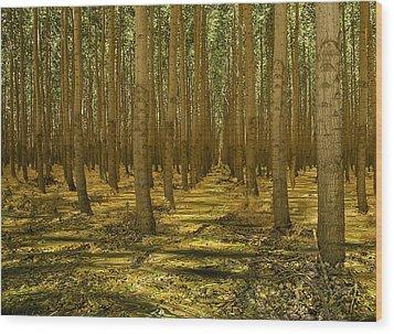 Just Add Water Wood Print by Jean Noren