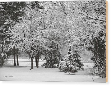 Just After A Snowfall Wood Print by Mary Machare