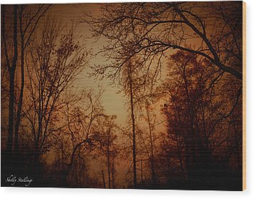 Wood Print featuring the photograph Just After Sunset by Shelly Stallings