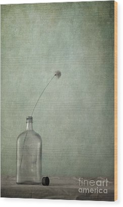 Just An Old Bottle And Its Cap Wood Print by Priska Wettstein