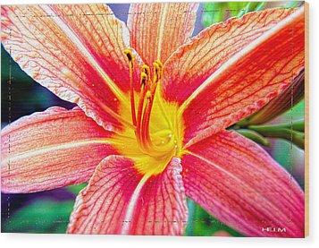 Just Another Day Lilly Wood Print by Mayhem Mediums