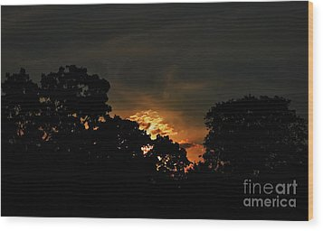 Just Before Dark Wood Print by Michelle Meenawong