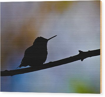 Wood Print featuring the photograph Just Chillin by Robert L Jackson