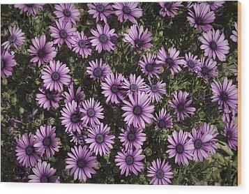 Just Flowers Wood Print by Goyo Ambrosio