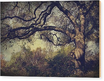 Just How It Ought To Be Wood Print by Laurie Search