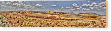 Just North Of Fairplay Colorado Wood Print