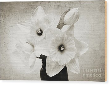 Just Plain Daffy 1 B W - Flora - Spring - Daffodil - Narcissus - Jonquil Wood Print by Andee Design
