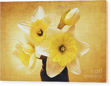 Just Plain Daffy 1 - Flora - Spring - Daffodil - Narcissus - Jonquil Wood Print by Andee Design