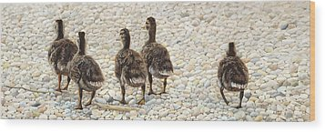 Just Waddling Wood Print by Tammy  Taylor