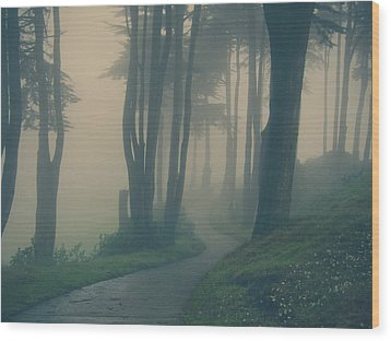 Just Whisper Wood Print by Laurie Search