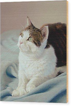 K C  Kitty Cat Wood Print by Barbara Groff