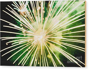 Wood Print featuring the photograph Kaboom by Suzanne Luft