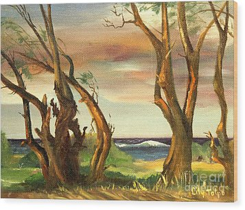 Kaina Point - Oahu Hi. Wood Print