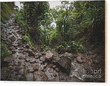 Kalalau Trail Na Pali Coast Wood Print
