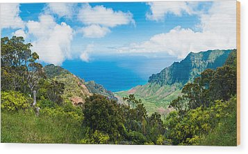 Kalalau Valley  Wood Print by Adam Pender