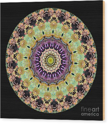 Kaleidoscope Ernst Haeckl Inspired Sea Life Series Wood Print by Amy Cicconi