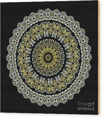 Kaleidoscope Ernst Haeckl Sea Life Series Steampunk Feel Wood Print by Amy Cicconi
