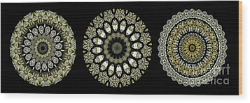Kaleidoscope Ernst Haeckl Sea Life Series Steampunk Feel Triptyc Wood Print by Amy Cicconi