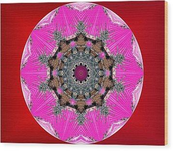 Kaleidoscope Wood Print by Mike Breau