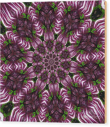 Kaleidoscope Raddichio Lettuce Wood Print by Amy Cicconi