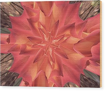Wood Print featuring the photograph Kaleidoscope Rose by Michele Kaiser