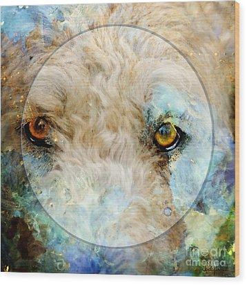 Kaliedoscope Eyes Wood Print by Judy Wood