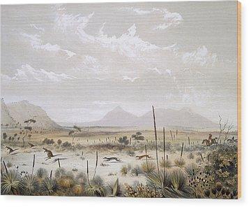 Kangaroo Hunting Near Port Lincoln Wood Print by George French Angas