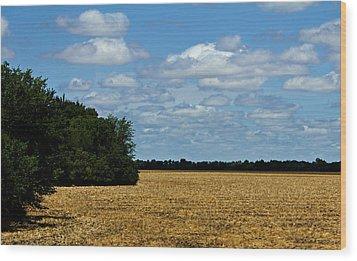 Kansas Fields Wood Print