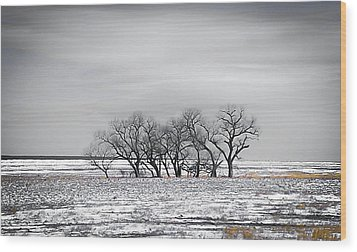 Kansas Snow Wood Print