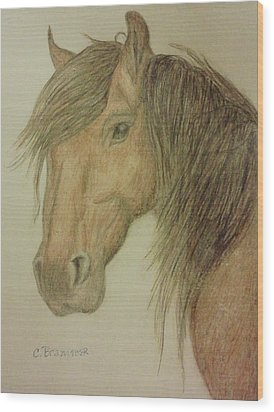 Kathy's Horse Wood Print by Christy Saunders Church