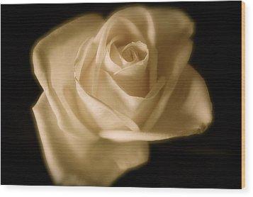 Katie's White Rose Wood Print