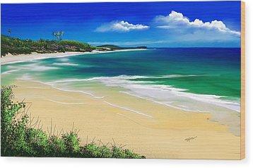 Wood Print featuring the digital art Kauai Beach Solitude by Anthony Fishburne