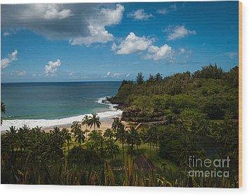 Kauai South Shore Jungle Wood Print